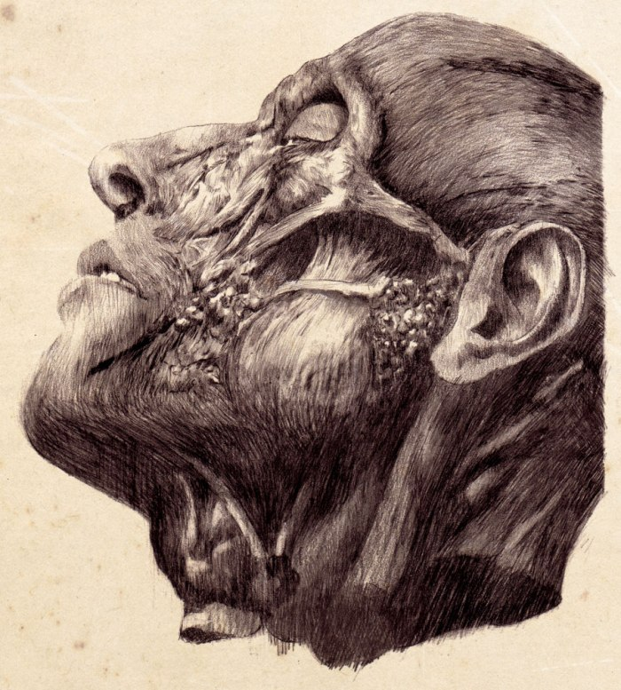 The-Flesh-in-Mind's-Conquering#2_pencil_30x21cm